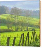 Appalachian Spring Morning Wood Print