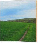 Appalachian Trail In Northern Maryland Wood Print