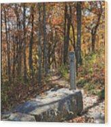 Appalachian Trail In Shenandoah National Park Wood Print