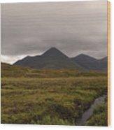 Appealing Scenic Landscacpe In Cuillen Hills Scotland  Wood Print