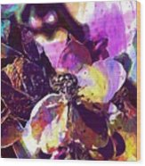 Apple Beetles Flowers Pollinating  Wood Print