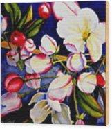 Apple Blossom Time Wood Print by Karen Stark