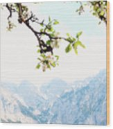 Apple Blossoms And Mountains Wood Print