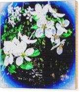Apple Blossoms In Blue White Mist Wood Print