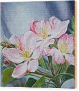Apple Blossoms With Honeybee Wood Print