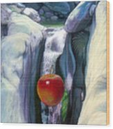 Apple Falls Wood Print