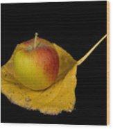 Apple Harvest Autumn Leaf Wood Print