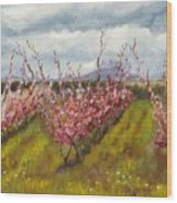 Apple Hill Springtime Wood Print