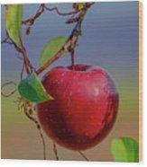 Apple On A Tree Wood Print