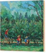 Apple Pickers  Littletree Orchard  Ithaca Ny Wood Print