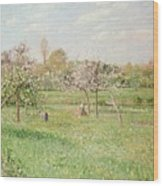 Apple Trees At Gragny Wood Print