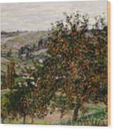 Apple Trees Near Vetheuil Wood Print by Claude Monet