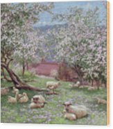 Appleblossom Wood Print