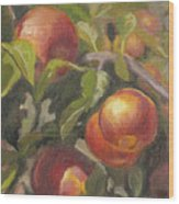 Apples In The Orchard Wood Print