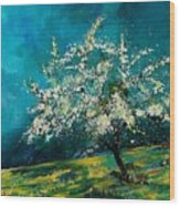 Appletree In Spring Wood Print