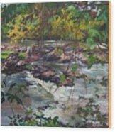 Appomattox View Wood Print
