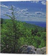 Approaching Little Gap On The Appalachian Trail In Pa Wood Print