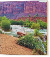 Approaching Navajo Falls Wood Print