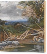 Approaching Storm In A Wooded Landscape Wood Print