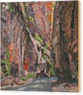 Apricot Canyon 2 Wood Print