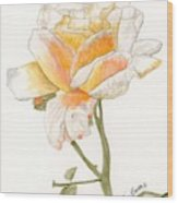 Apricot Rose Wood Print