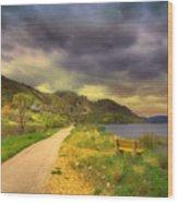 April 29 2010 Wood Print