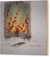 April 4 2010 Wood Print