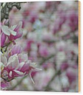 April Blossoms Wood Print