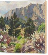 April Hike Wood Print
