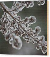 April Ice Storm 8 Wood Print