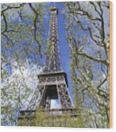 April In Paris Wood Print