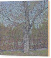 April Wood Print