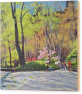 April Morning In Carl Schurz Park Wood Print