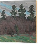 April White Pine Forest Wood Print
