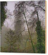Aptos Creek Wood Print