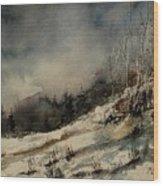 Aqua 051207 Wood Print