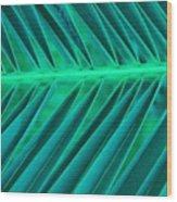 Aqua Angles Wood Print