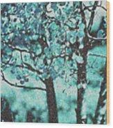 Aqua Aspens Wood Print