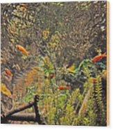 Aquarium Reflections Wood Print