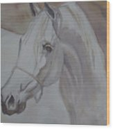 Arab Stallion In The Desert Wood Print