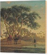 Arab Oasis Wood Print