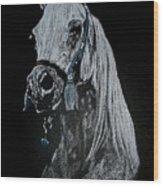 arabian horse I Wood Print