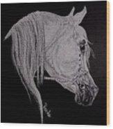 arabian horse XI Wood Print