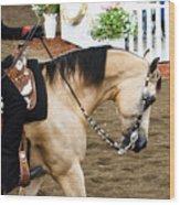 Arabian Show Horse 5 Wood Print