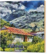 Aragua Valley Wood Print