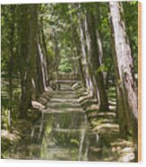Aranjuez Park Canals Wood Print by Stefano Piccini