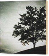 Arbol Wood Print