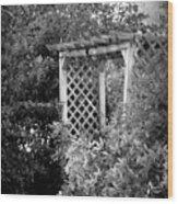 Arbor - Bw Wood Print