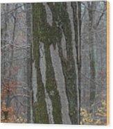 Arboreal Design Wood Print