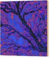Arboreal Plateau 10 Wood Print